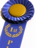 1stPlace How to Win a Blogging Award
